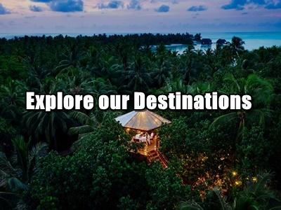 1papaya+Destinations